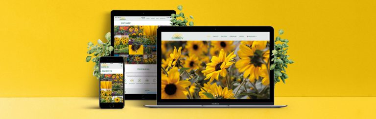 sunfinity folder grafisch design