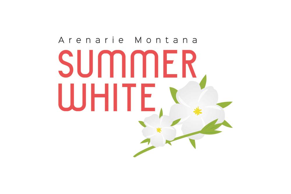Arenarie montana summer